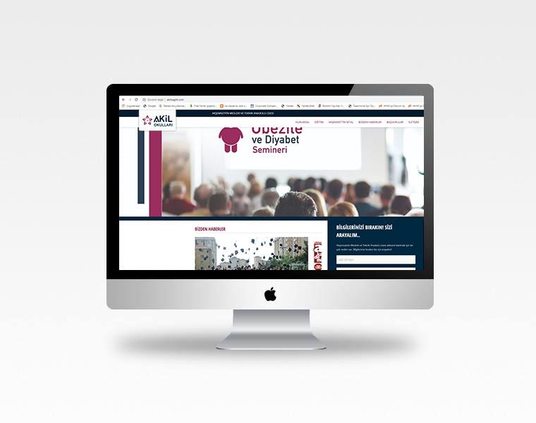 Akil Okulları - Akil Sağlık Web